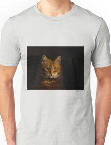 Dark side of the sun Unisex T-Shirt