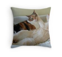 Basket Hog Throw Pillow