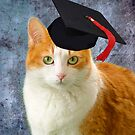 I Graduated! by Zoe Marlowe