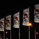 """Corio Flags at Night"" by Sophie Lapsley"