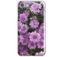Easter daisies iPhone Case/Skin