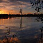 Wonga Wetlands sunset by John Vandeven