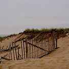 Dunes 2 by DarylE