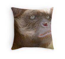 Serious Throw Pillow