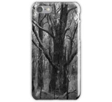 Scary Trees- Porter Scrub iPhone Case/Skin