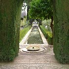 Fountain in the Generalife, Granada, Spain by lizjames