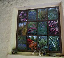Brantwood flora window by BronReid