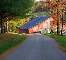 Kentucky Barns by naturevine