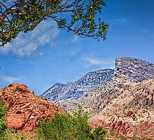 Red Rock Nevada by Peter Thorpe