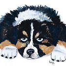 Puppy Breath #4 ~ Australian Shepherd Puppy ~ Oil Painting by Barbara Applegate