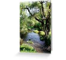Water and Willow Greeting Card
