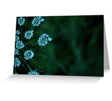 stars in the grass  Greeting Card