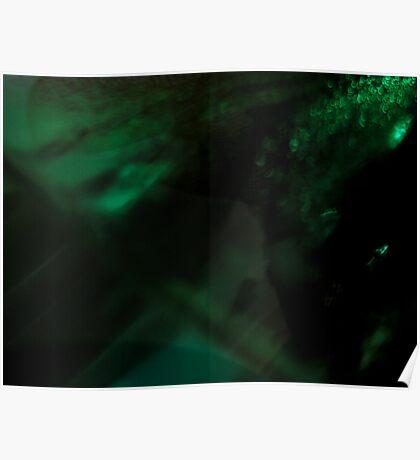 GREEN DREAM V Poster