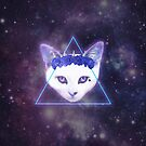 Galaxy Cat by Palomino1234