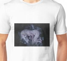 You left me to freeze Unisex T-Shirt