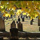 Cemetery in Moosup by Debbie Robbins