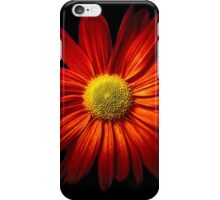 RED CHRYSANTHEME iPhone Case/Skin