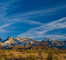 Organ Mountains - New Mexico by GuiltyPixel