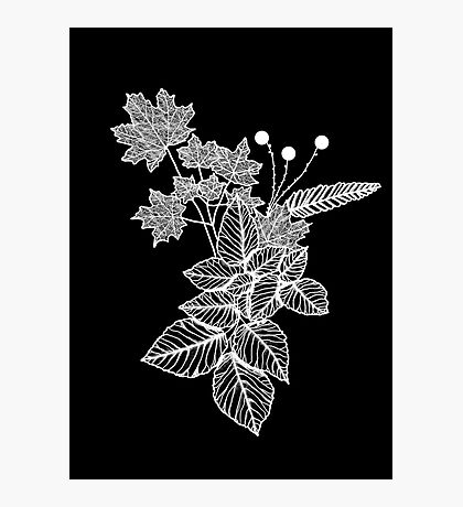 Leaves Black Photographic Print