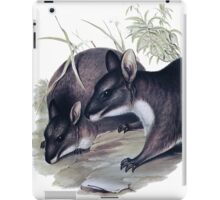 The Parma wallaby painting iPad Case/Skin