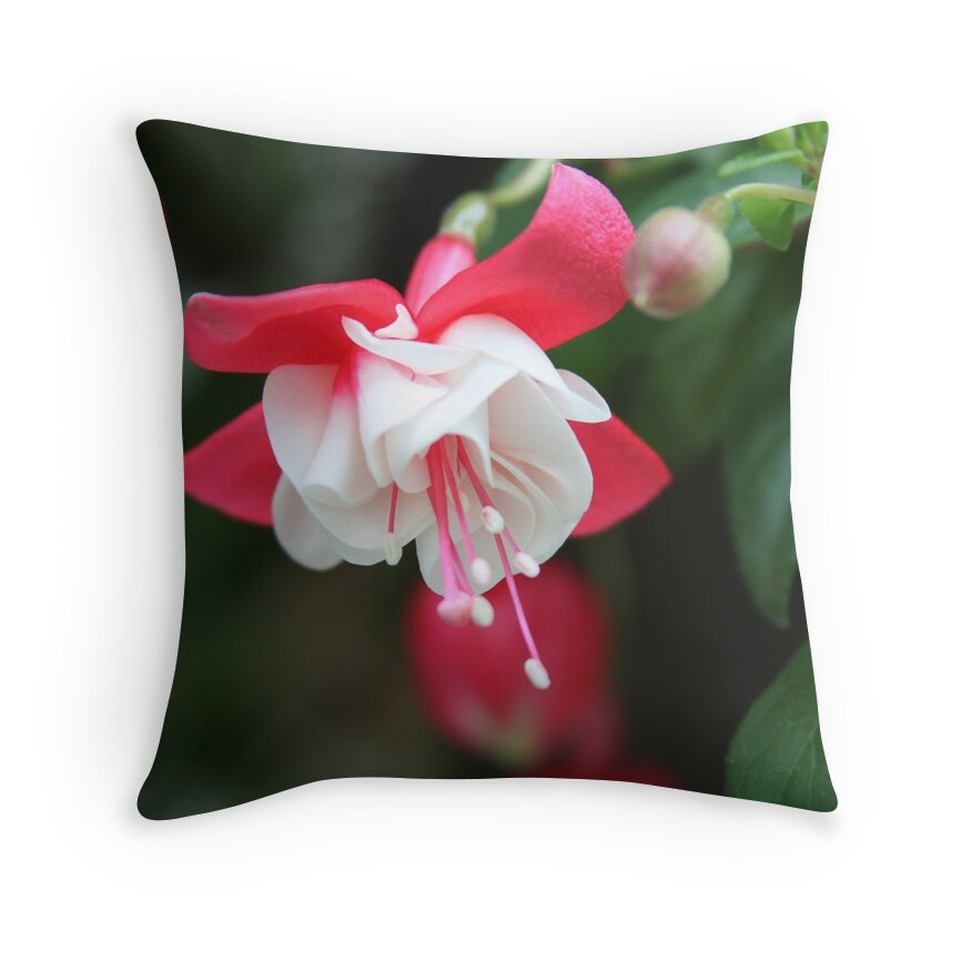 Fuschia Throw Pillows :