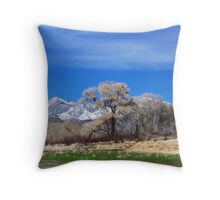 Whitewater Preserve Throw Pillow