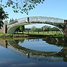 The Iron Bridge, Braunston Turn. by Roy  Massicks