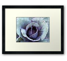 Red Cabbage Framed Print