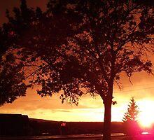 Light on Horizon by tkatt