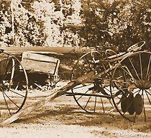 Vintage Farm Equipment by HeavenlyCanvas