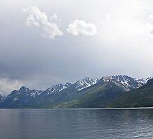 Teton Mountains by Kim Barton
