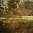 Old Tire Swing by Vincent Schulte
