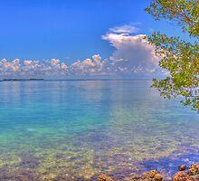 Gulf Storm by njordphoto