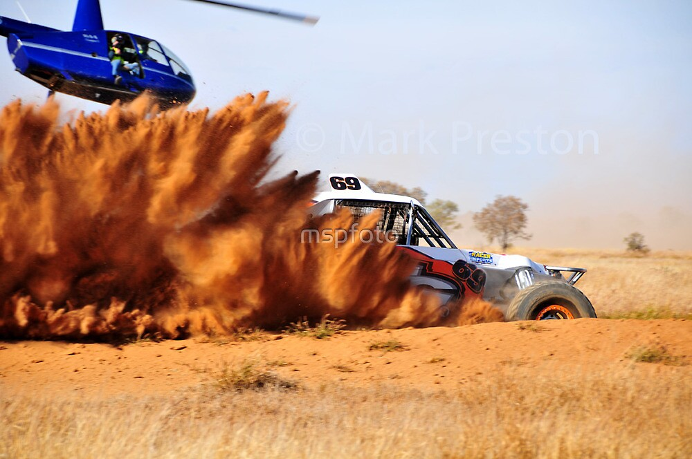 Bull Dust and Fly Boys by mspfoto
