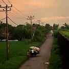 Heading Home by nadeedja