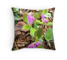 Ground Series 8 Throw Pillow
