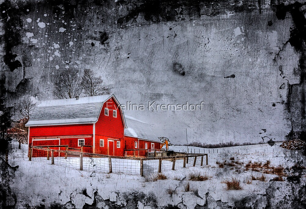 Rural Textures by Evelina Kremsdorf