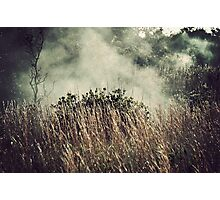 Hawaii Volcanoes National Park - Steam Vents Photographic Print