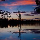 Wonga Wetlands sunset 2 by John Vandeven