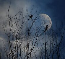 Misty Blue Moonrise by digitalmidge
