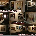My perspective on the Fairfield City Art Society's 43rd Arts Alive Prize. by Ozcloggie