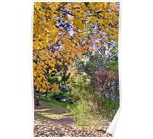 Autumn Colours # 1 Poster
