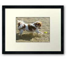 Timmy in the Water Framed Print