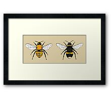 Bumblebee Illustrations Framed Print