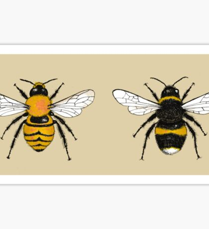 Bumblebee Illustrations Sticker