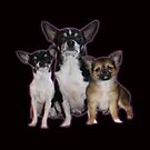 Michelles dogs by Diana-Lee Saville