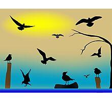 Birds paradise Photographic Print
