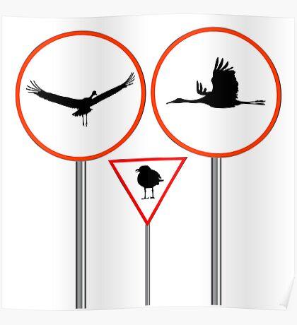Birds traffic signs Poster