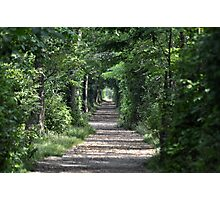 The Endless Trail Photographic Print