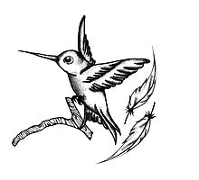 Hummingbird  by TrueNoire